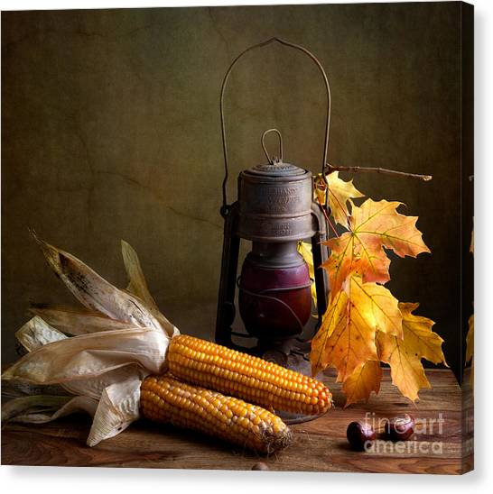Corn Canvas Print - Autumn by Nailia Schwarz