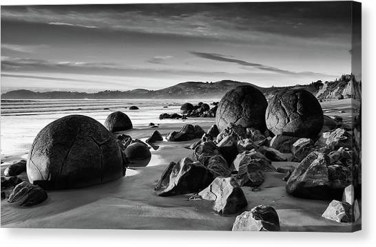 Sea Turtles Canvas Print - Rock by Mariel Mcmeeking
