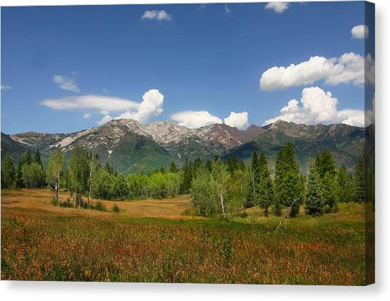 Rocky  Mountains Canvas Print