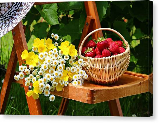 Fruit Baskets Canvas Print - Still Life by Mariel Mcmeeking