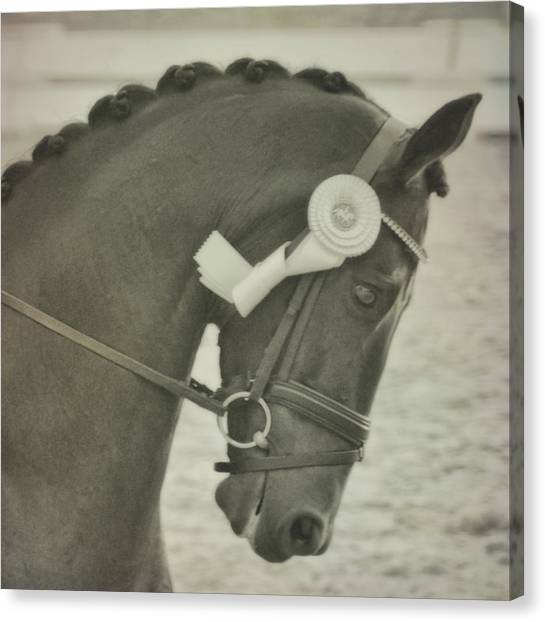 Victory Gallop Canvas Print by JAMART Photography
