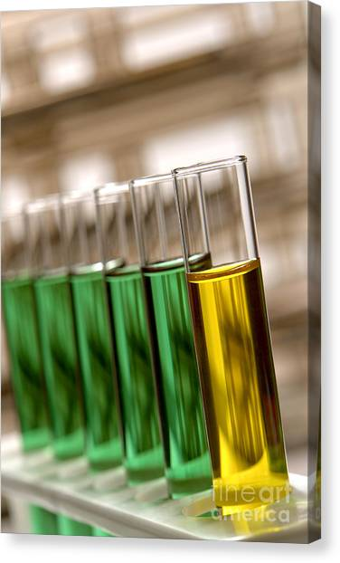 Test Tubes Canvas Print - Laboratory Test Tubes In Science Research Lab by Olivier Le Queinec