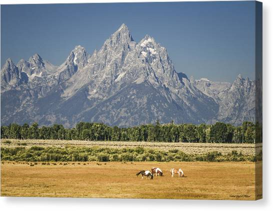 #5687 - Wyoming Canvas Print