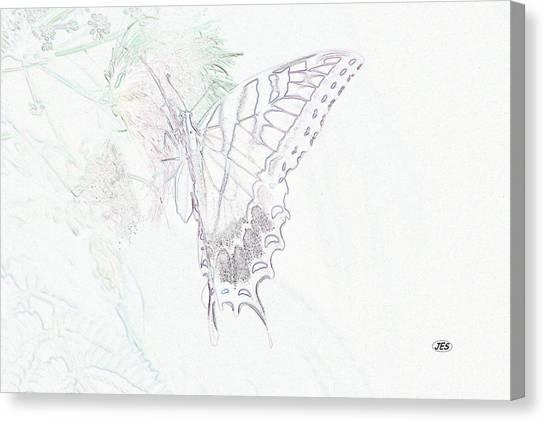 5816 3 Canvas Print by Jim Simms