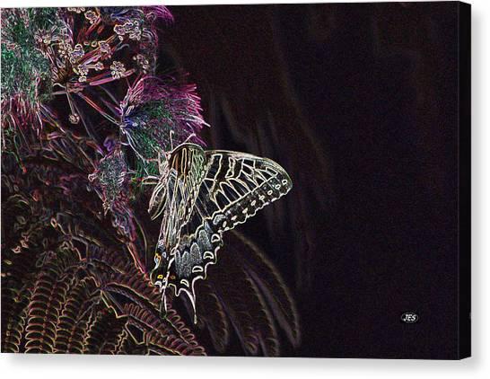 5818 3 Canvas Print by Jim Simms
