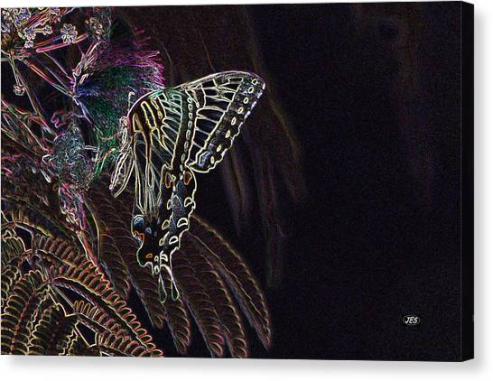 5819 2 Canvas Print by Jim Simms