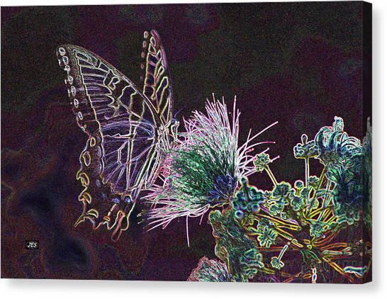 5849 3 Canvas Print by Jim Simms
