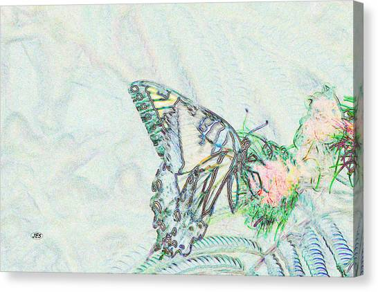 5859 4 Canvas Print by Jim Simms