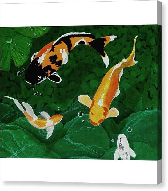 Aquariums Canvas Print - Instagram Photo by Karyn Robinson