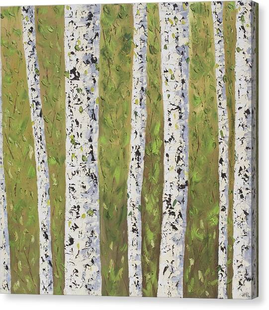 Aspen Trees Colorado Canvas Print by Frederic Payet