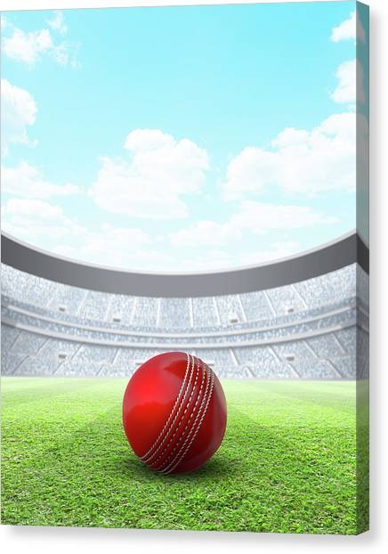 Cricket Canvas Print - Floodlit Stadium Day by Allan Swart