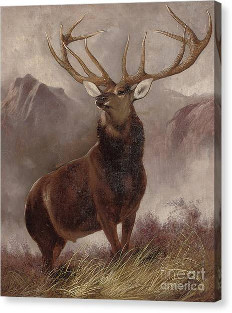 Landseer Canvas Print - Monarch Of The Glen by Edwin Landseer