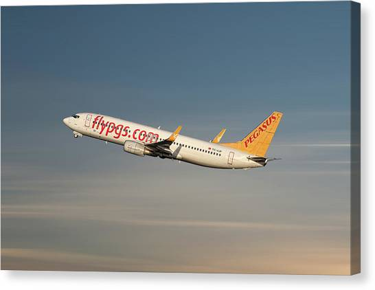 Pegasus Canvas Print - Pegasus Airlines Boeing 737-82r by Smart Aviation