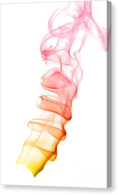 smoke XIX Canvas Print