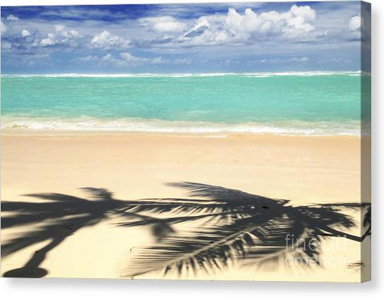 Beach Resort Canvas Print - Tropical Beach by Elena Elisseeva