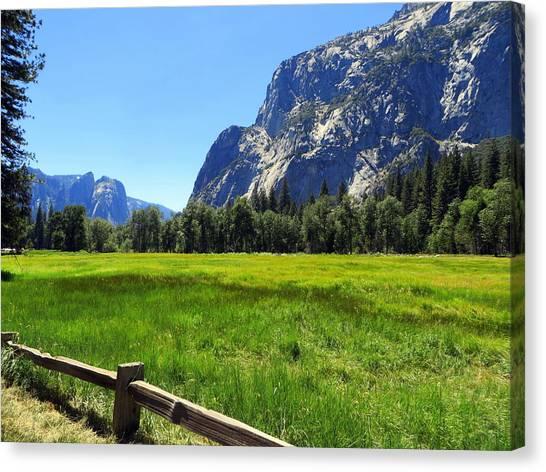 Yosemite Meadow Photograph Canvas Print