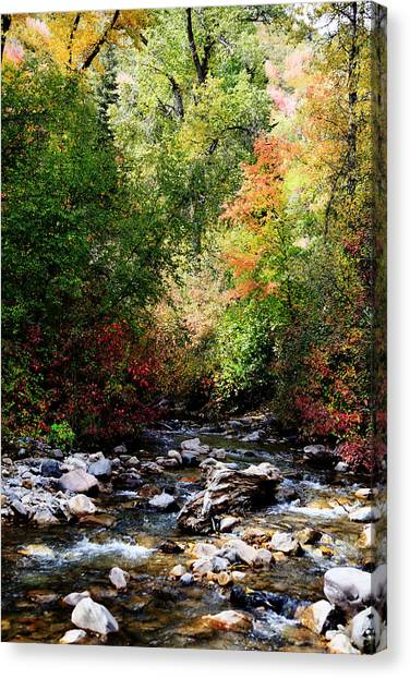 Rocky Mountain Fall Canvas Print