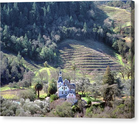 6b6312 Falcon Crest Winery Grounds Canvas Print