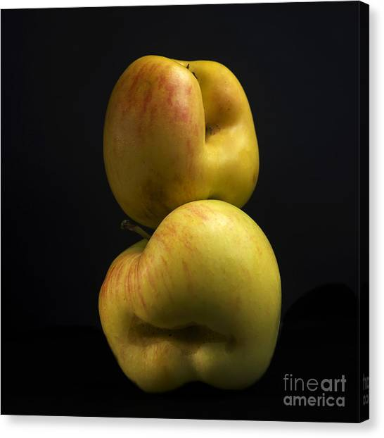 Cut-outs Canvas Print - Apples by Bernard Jaubert