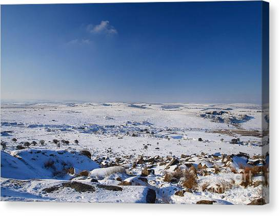 Bodmin Moor Canvas Print by Carl Whitfield