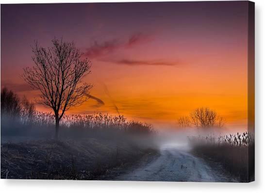 Sunrise Horizon Canvas Print - Fog by Maye Loeser