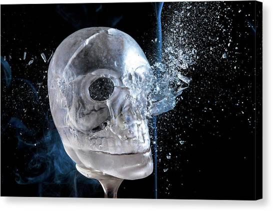 Ice Skullpture Canvas Print