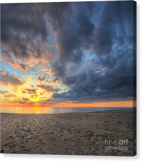 South Buffalo Canvas Print - Warren Dunes State Park by Twenty Two North Photography