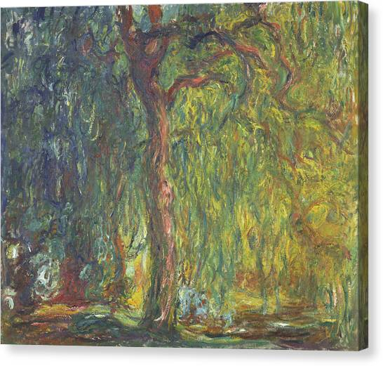 Weeping Willows Canvas Print - Weeping Willow by Claude Monet