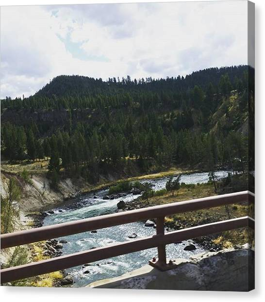 Rocky Mountains Canvas Print - Pines Over River by Jonathan Stoops