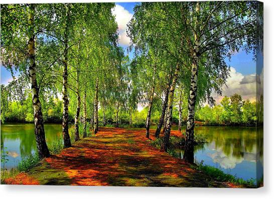 Grove Canvas Print - Landscape by Mariel Mcmeeking