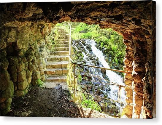 Forest Paths Canvas Print - Waterfall by Super Lovely