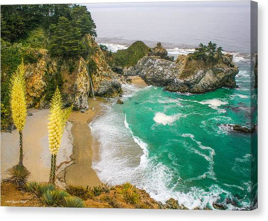 #7842 - Big Sur, California Canvas Print