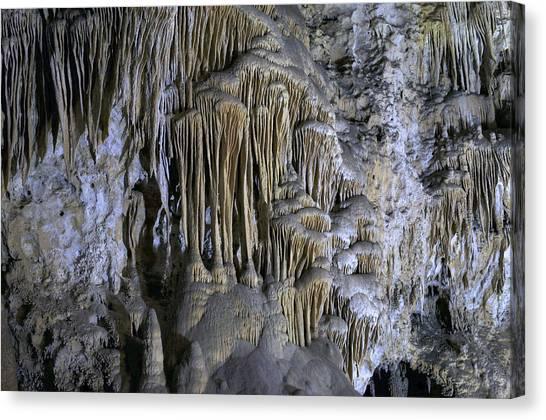 Carlsbad Caverns Canvas Print - Carlsbad Caverns Detail by Stephen  Vecchiotti
