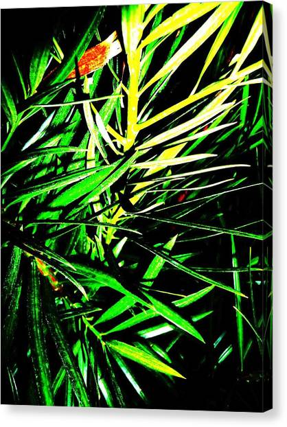 Leaves Canvas Print by Jacqueline Doulis