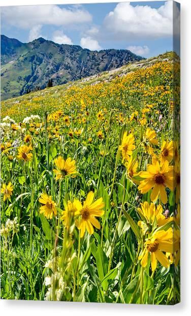 Wasatch Mountains Utah Canvas Print