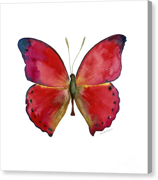 83 Red Glider Butterfly Canvas Print