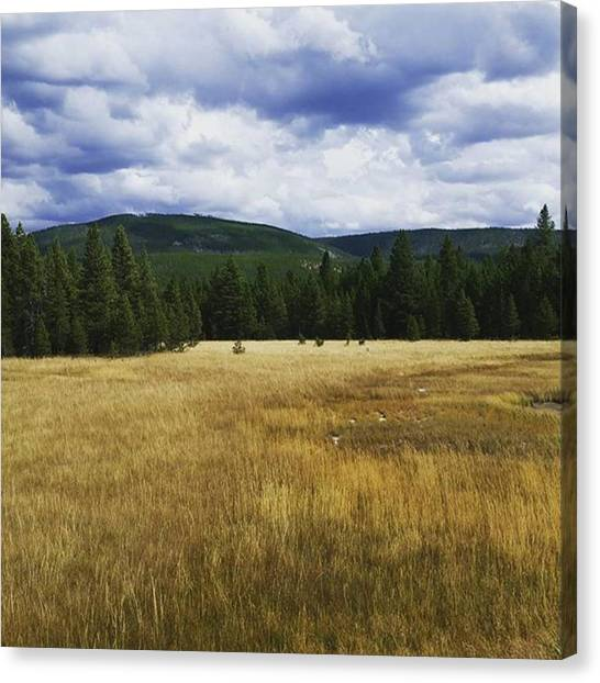 Yellowstone National Park Canvas Print - Land Before Time by Jonathan Stoops