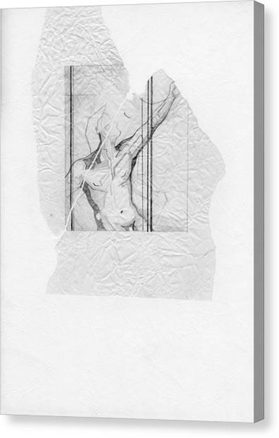 87 - 4 Canvas Print