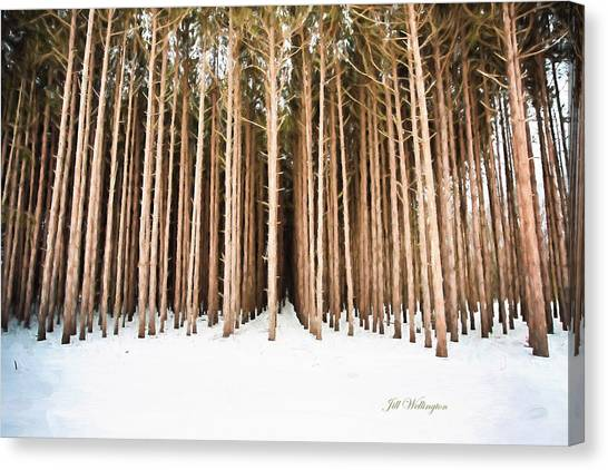 Michigan Winter Canvas Print