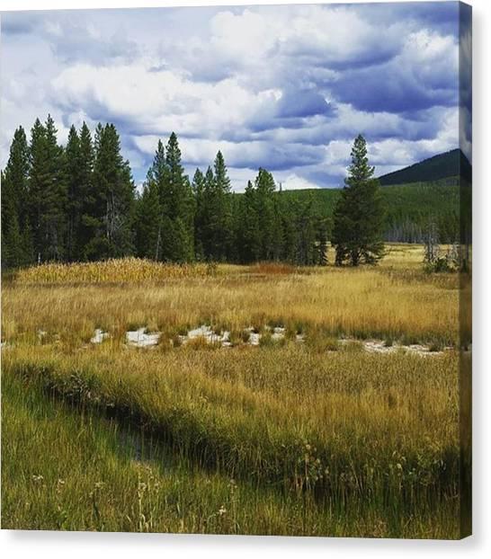 Yellowstone National Park Canvas Print - Purple Mountain Majesty by Jonathan Stoops