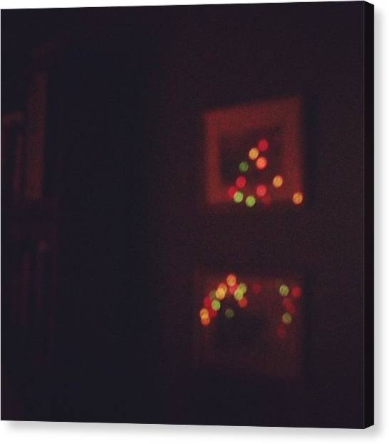 Salamanders Canvas Print - Christmas Reflection by Salamander Woods Studio-Homestead
