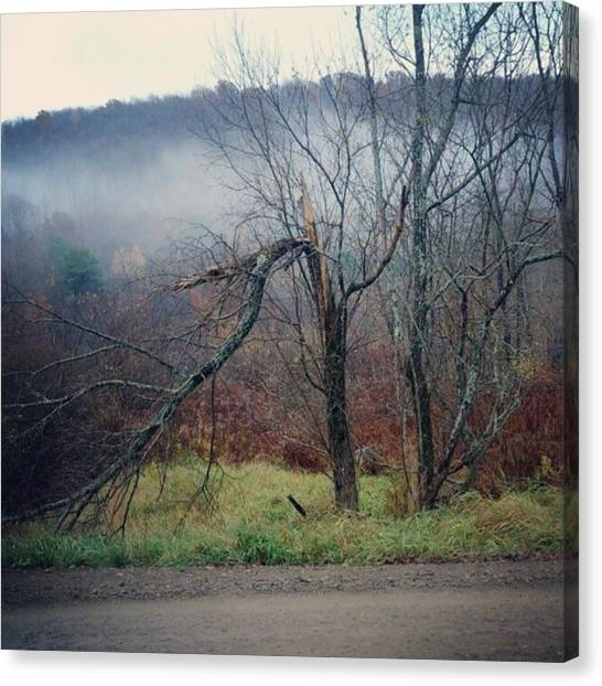 Dirt Road Canvas Print - Instagram Photo by Lizze Cole