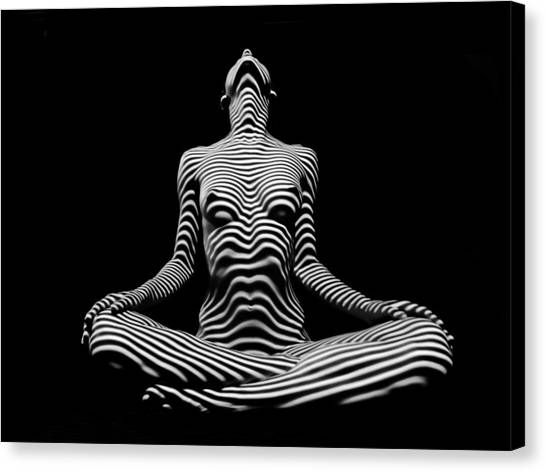 9934-dja Lotus Position In Zebra Stripes  Canvas Print