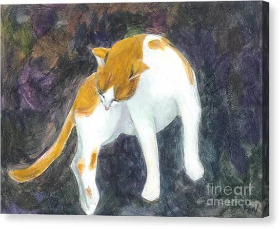 A Bathing Cat Canvas Print