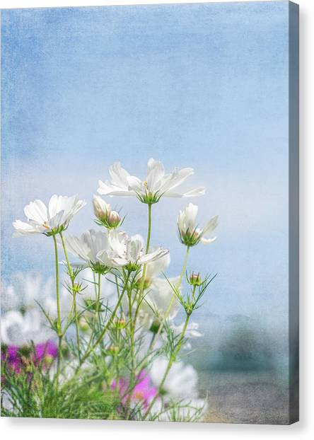 A Beautiful Summer Day Canvas Print