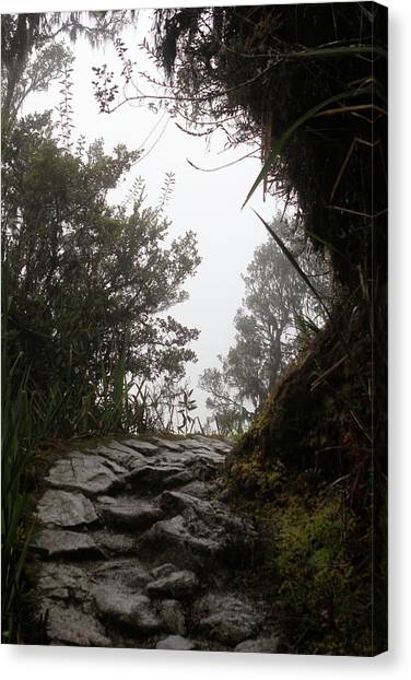 A Bend In The Path Canvas Print