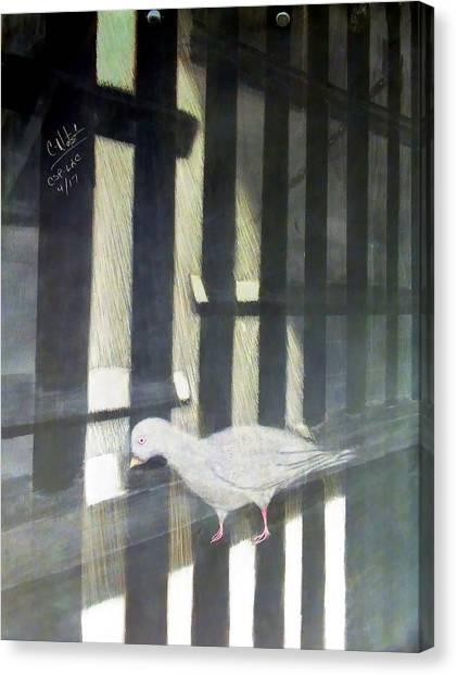 Donald C-note Hooker Canvas Print - A Bird Man's Dream by Donald Cnote Hooker