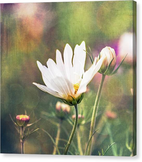 A Bouquet Of Flowers Canvas Print