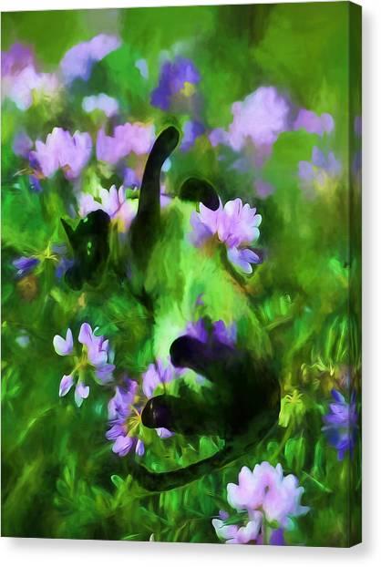 A Cat's Dream Canvas Print