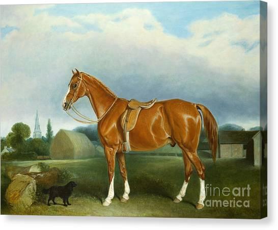 Saddles Canvas Print - A Chestnut Hunter And A Spaniel By Farm Buildings  by John E Ferneley